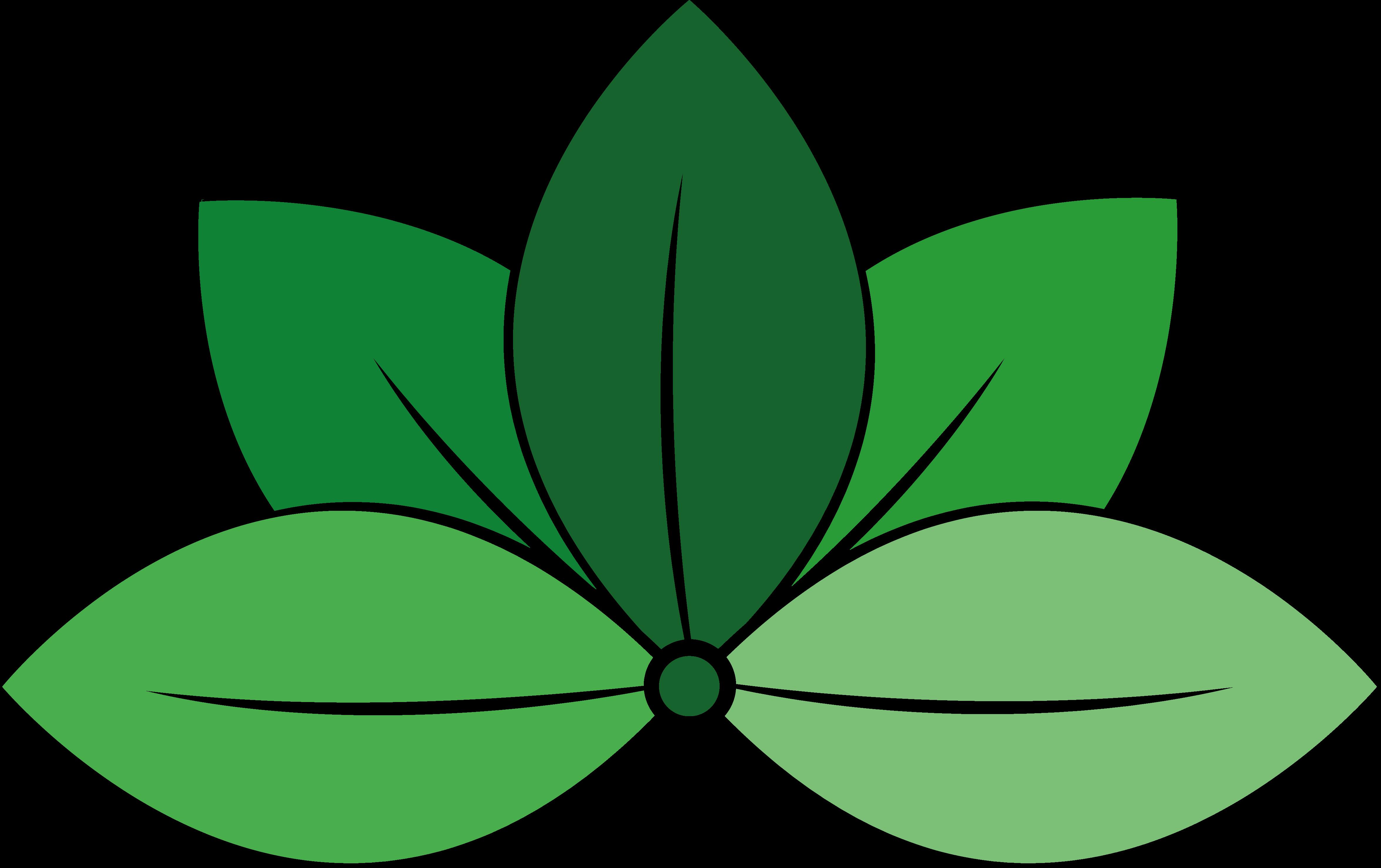 Gijs Konings Groenprojecten